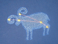 Image-Embroidery-305312129.jpg