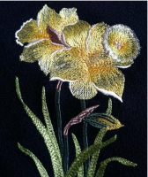 Image-Embroidery-428979941.jpg